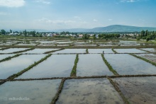 Рисовые чеки возле Узгена